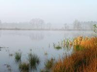 Misty-morning_AVT-